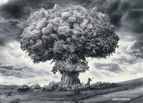 greenpeace_bomb_big